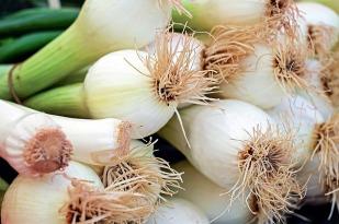 onion-1415814_640